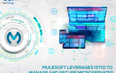 Mulesoft leverages Istio to manage and secure Microservices