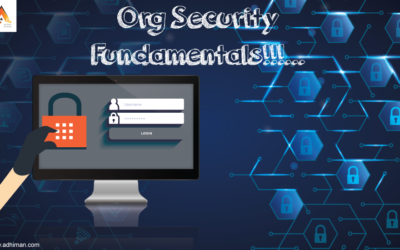 Org Security Fundamentals